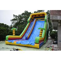 Simple Large Inflatable Dry Slide / Bright Colour Palm Tree Slides