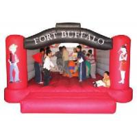 Wholesale Inflatable Castles Ty-9087g from china suppliers