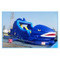 Wholesale Inflatable Jumping Castle& Bouncy Castle for Amusement Park (CY-M2076) from china suppliers