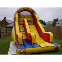 Wholesale ODM Kids Large Long 0.55mm PVC tarpaulin Commercial Inflatable Slide rentals  from china suppliers