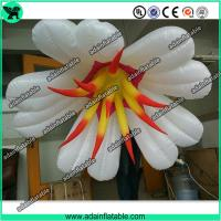 Wholesale Autumn Event Party Hanging Decoration Inflatable White Flower With LED Light from china suppliers