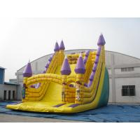 Wholesale attractive hot sale inflatable slides with good price from china suppliers