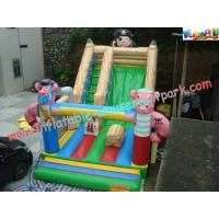 Wholesale Child Large Customized Commercial Inflatable Slide , PVC Slides With CE Blower from china suppliers