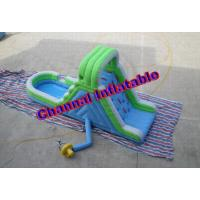 Wholesale Inflatable Blue and Green Water Slide (Residential) from china suppliers