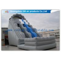 Wholesale Kids / Adults Double Inflatable Water Slide With Small Pool For Summer Games from china suppliers