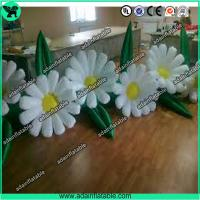 Wholesale Event Decoration Inflatable,Party Decoration Inflatable,Stage Decoration Inflatable from china suppliers