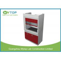 China Metal Laboratory Fume Hood Laboratory Equipment , Ducted Fume Cupboard on sale