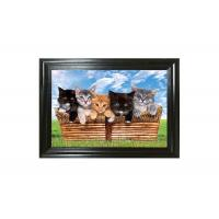 Wholesale Cute Craft Paper Printing Lenticular 3D Pictures Of Animals Wallpaper from china suppliers