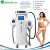 Wholesale 3 Treatment Handles Fat Freeze Cryolipolysis Treatment / Cryolipolysis Slimming Machine from china suppliers