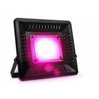 Wholesale Indoor Grow Kits 200W Led flood Growth Light For Greenhouse High Bright from china suppliers
