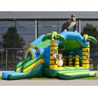 Wholesale Cheap big inflatable adult bounce house with slide for rental from china suppliers