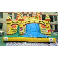 inflatable wall castle  slide , inflatable dry slide ,giant inflatable slide