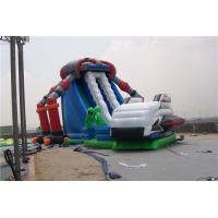 Wholesale Castle Style Bounce House Water Slide Combo Rentals , Double Lane Water Slide from china suppliers