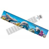 Wholesale Deep Images 3D Dolphin Cartoon Scale Lenticular Photo Printing / PET Plastic Straight Ruler from china suppliers