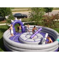 inflatable sport arena