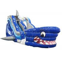 Wholesale Commercial Giant Shark Bouncy Castle Slide Pool For Amusement Park from china suppliers