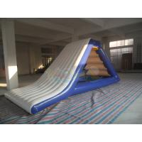 Wholesale Inflatable  Freefall Water Slide from china suppliers