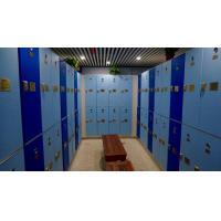 Wholesale 18 Comparts 3 Column IOT Locker  Triple Tier Lockers Durable / Lightweight from china suppliers