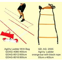 Wholesale Agility Ladder, Flat Rung Speed Ladder, Hop Grid (GD-AG-) from china suppliers