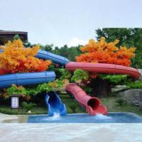 Wholesale Customized Colorful Fiber Glass Water Park Project , Spiral Water Slide For Adults from china suppliers