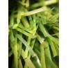 Buy cheap Light Green 18000/9F 50mm Artificial Diamond Football Grass from wholesalers