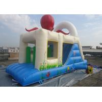 Wholesale 7m x 3m Inflatable Jumping Castle With Slides Up And Down / Inflatable bouncer For Kids from china suppliers