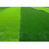 Wholesale Reinforced Playability Anti - slip Synthetic Grass For Futsal Environment Friendly from china suppliers