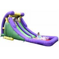 China Kids Or Adults Commercial Inflatable Water Slides Eco - Friendly Material on sale