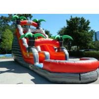 Wholesale Colorful Backyard Tropical Inflatable Water Slide With 5 Years Warranty from china suppliers