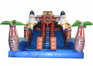 China Pirate Themed Dolphins Commercial Inflatable Water Slides For Rental In Amusement Park Inflatable Pirate Dry Slide on sale