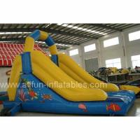 China Inflatable Slide/Slope/Inflatable Game/Toy on sale