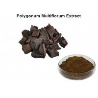 Wholesale Polygonum Multiflorum Natural Plant Extracts With 5% Total Anthraquinones from china suppliers