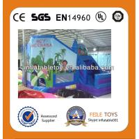 Wholesale 2014 hot sell dora inflatable jumping castle from china suppliers