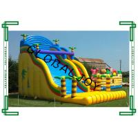 China Giant Colorful Inflatable Dry Slide , Inflatable Bouncer Slide For Kids on sale