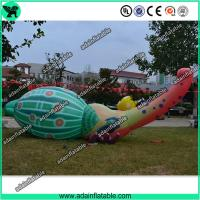 Wholesale Event Inflatable Animal, Inflatable Bettle, Party Inflatable Cartoon from china suppliers
