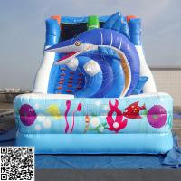 Wholesale Marine Style PVC Tarpaulin 0.55mm Double Inflatable Dry Slides Commercial Grade from china suppliers