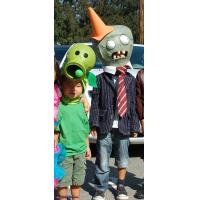 Wholesale NO.4086 Eggplant plant mascot costume from china suppliers