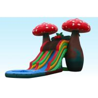 China Amazing Special 23Ft Mushroom Inflatable Water Slides With Small Pool For Party on sale