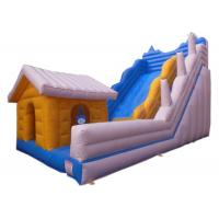 PVC Tarpaulin Inflatable Dry Slide Customized Size With Hut Bouncer House