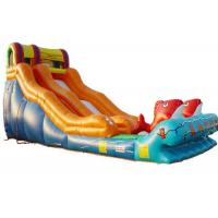 China Kindergarten Baby Kahuna Large Inflatable Slide Inflatable Fun Slide Fire Resistance on sale