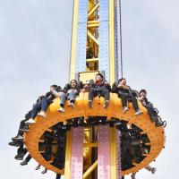 Wholesale Crazy Free Fall Tower , Sky Tower Ride 360 Degree Rotary Feature from china suppliers