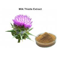 Wholesale Milk Thistle Natural Plant Extracts Silymarin Scavenging Active Oxygen For Liver Protecting from china suppliers