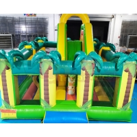 Wholesale ROHS Plato 1000D Inflatable Bounce Houses For Adult Children from china suppliers