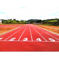 Quality 13mm PU Sports Flooring For Synthetic Athletic Track for sale