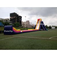 Wholesale Plato 0.55mm Pvc Tarpaulin 56*14.5*13.5m Giant Inflatable Hippo Slide For Adults from china suppliers
