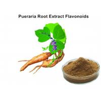 Wholesale Pueraria Natural Plant Extracts 40% Flavonoids for Hangover breast enhancement / postponed female menopause from china suppliers
