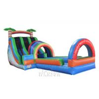 Buy cheap Dual Lane Water Slide with pool WSS-252/Applicable to amusement park activities from wholesalers