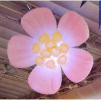 Wholesale 1m Hung Lighting Inflatable Flower for Stage and Concert Decoration with Light from china suppliers