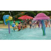 Quality Fiberglass Fish Spray Park Water Equipment For Children / Kids Amusement Water Park for sale