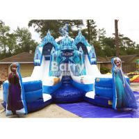 Customized Size Frozen Double Commercial Inflatable Slide Indoor And Outdoor For Kids